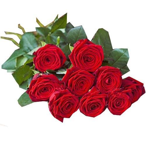 Combien de roses pour une naissance for Offrir des roses