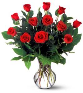 offrir 12 roses à une femme