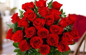 offrir 24 roses à une femme