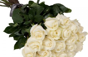 30 roses blanches