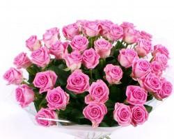 30 roses roses