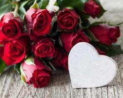 Combien de roses - Signification nombre de roses ...