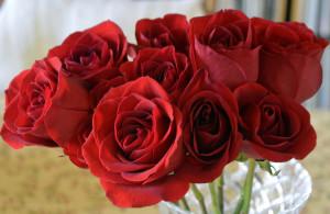 prix livraison 10 roses