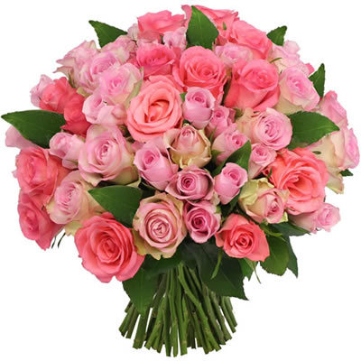 Combien coute un bouquet de 60 roses for Bouquet de rose
