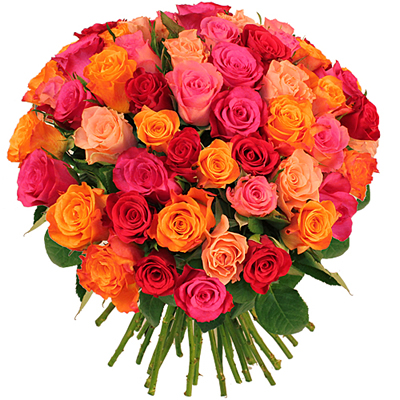Combien coute un bouquet de 80 roses for Bouquet de rose